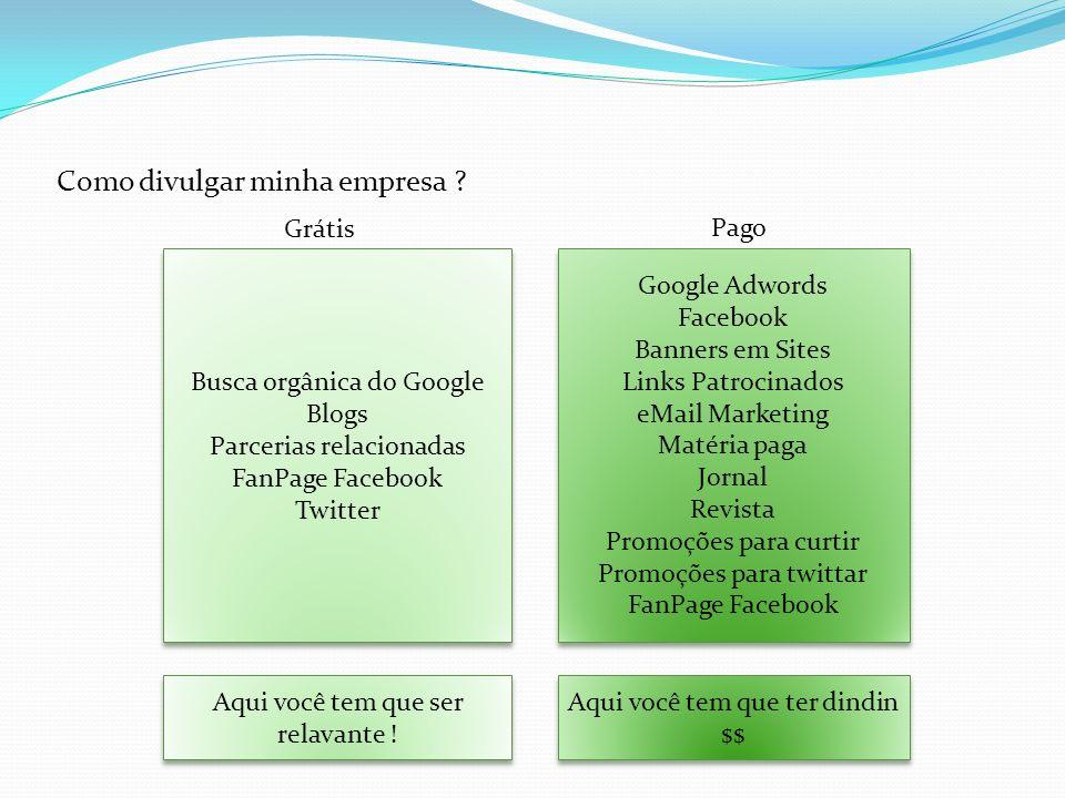 Como divulgar minha empresa ? Busca orgânica do Google Blogs Parcerias relacionadas FanPage Facebook Twitter Busca orgânica do Google Blogs Parcerias