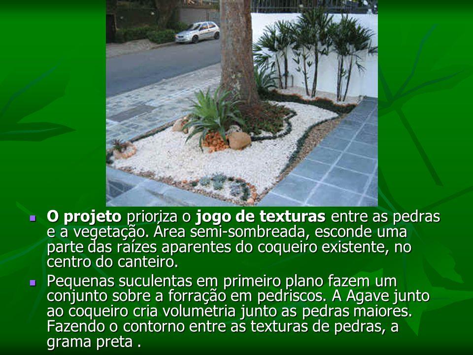 O projeto prioriza o jogo de texturas entre as pedras e a vegetação.