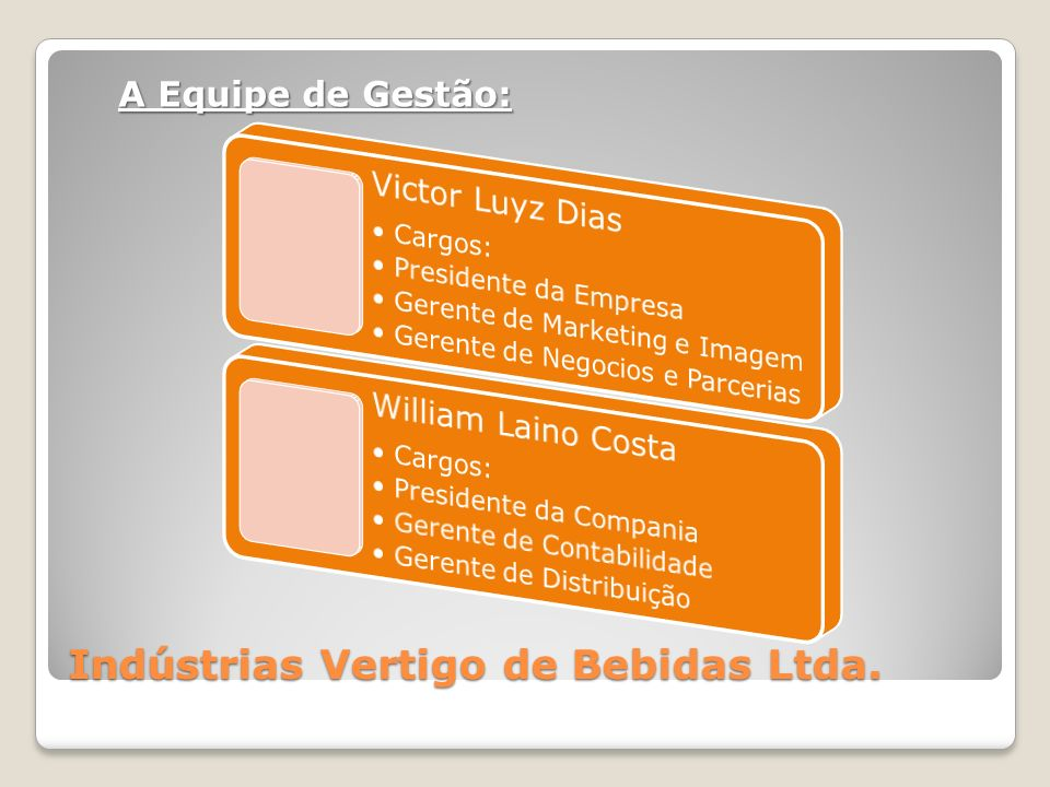 Indústrias Vertigo de Bebidas Ltda. A Equipe de Gestão: