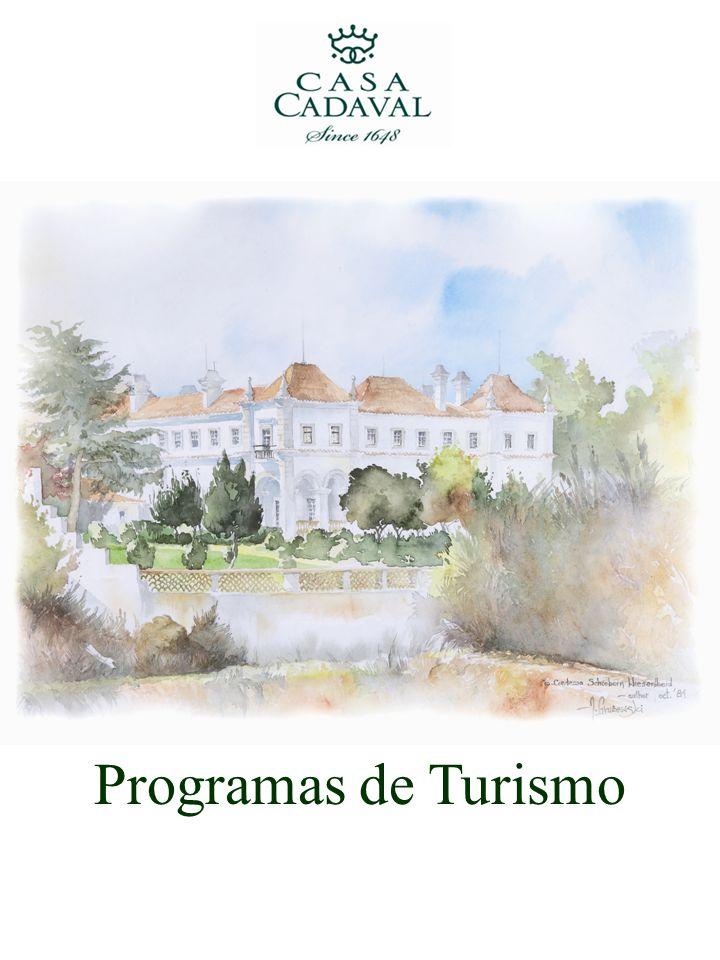 Programas de Turismo