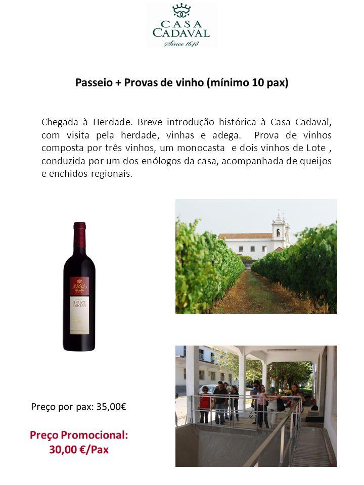 Chegada à Herdade. Breve introdução histórica à Casa Cadaval, com visita pela herdade, vinhas e adega. Prova de vinhos composta por três vinhos, um mo