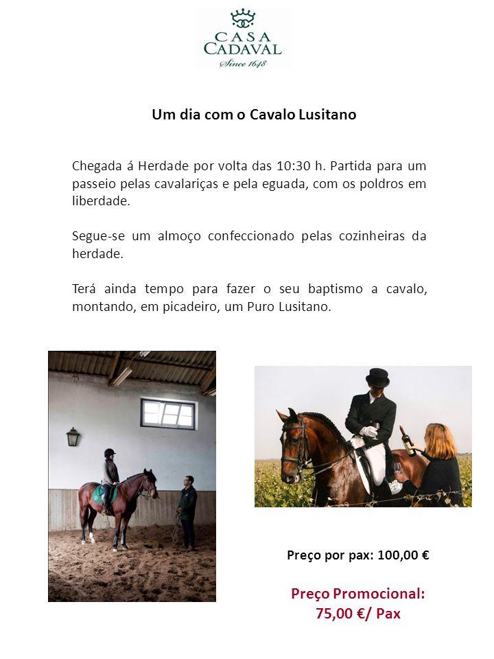 Um dia com o Cavalo Lusitano Chegada á Herdade por volta das 10:30 h. Partida para um passeio pelas cavalariças e pela eguada, com os poldros em liber