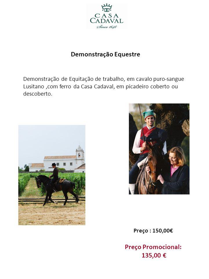 Demonstração Equestre Demonstração de Equitação de trabalho, em cavalo puro-sangue Lusitano,com ferro da Casa Cadaval, em picadeiro coberto ou descobe