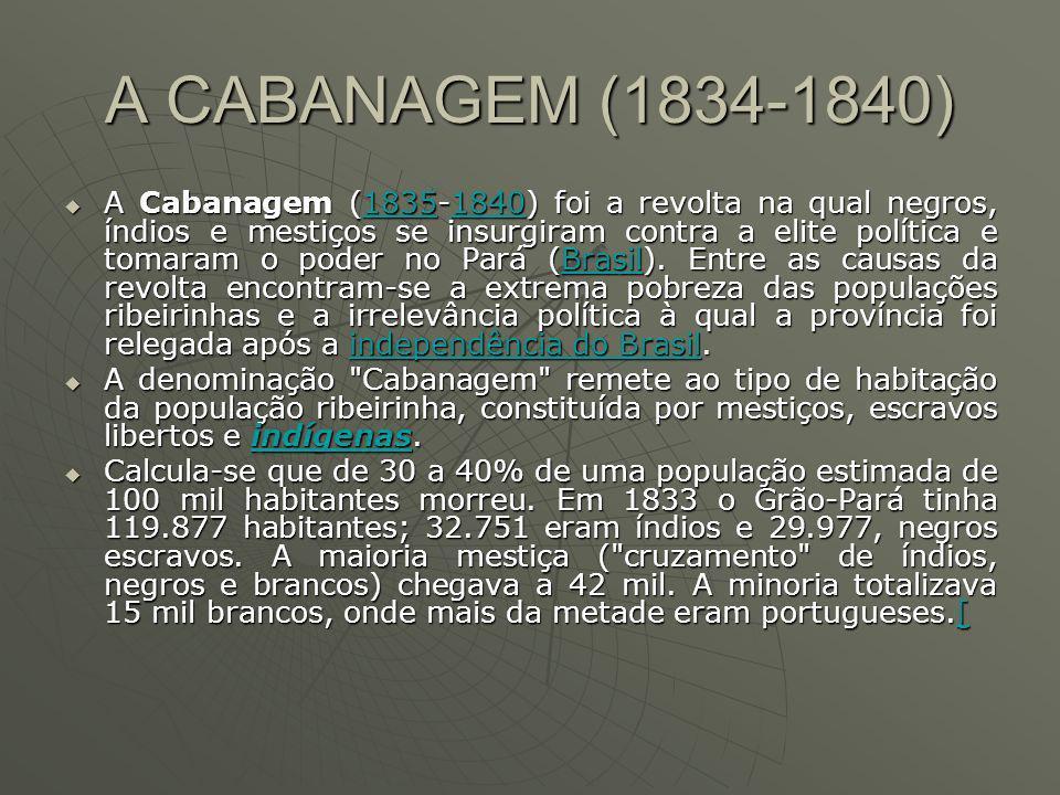 A CABANAGEM (1834-1840) A Cabanagem (1835-1840) foi a revolta na qual negros, índios e mestiços se insurgiram contra a elite política e tomaram o poder no Pará (Brasil).