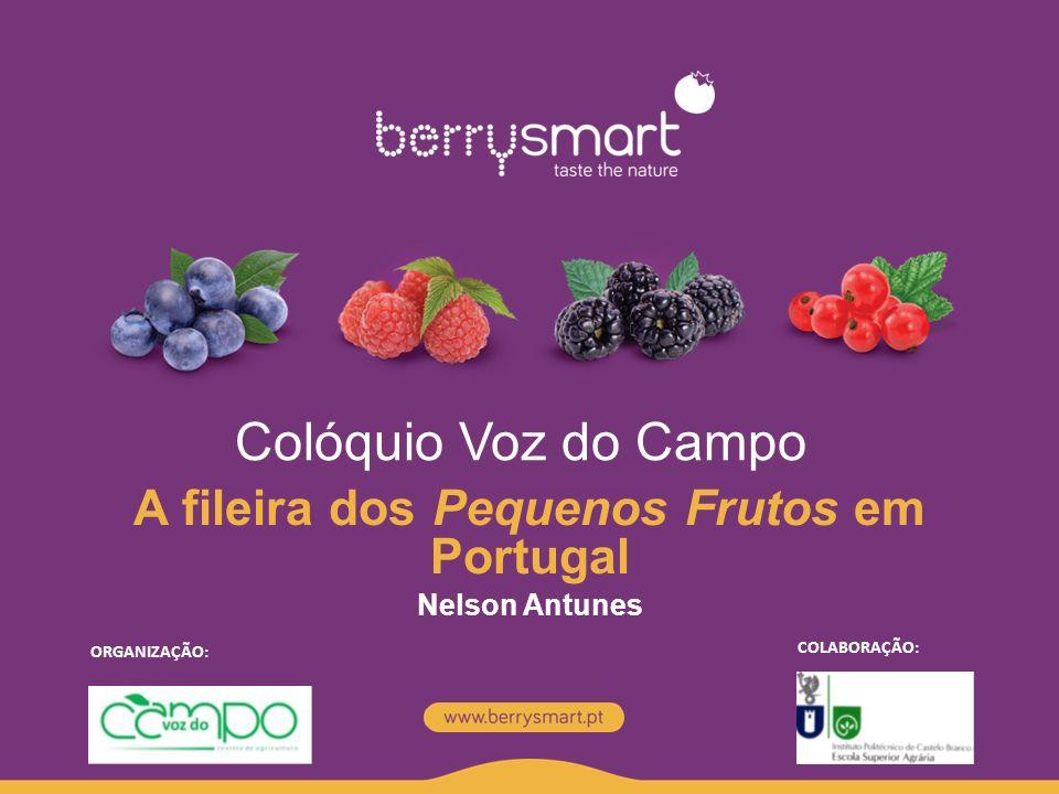 Colóquio Voz do Campo A fileira dos Pequenos Frutos em Portugal Nelson Antunes ORGANIZAÇÃO: COLABORAÇÃO: