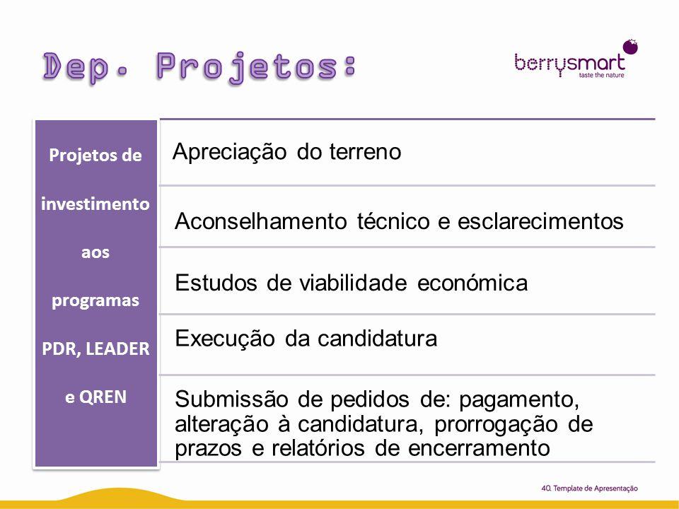 Projetos de investimento aos programas PDR, LEADER e QREN Apreciação do terreno Aconselhamento técnico e esclarecimentos Estudos de viabilidade económ
