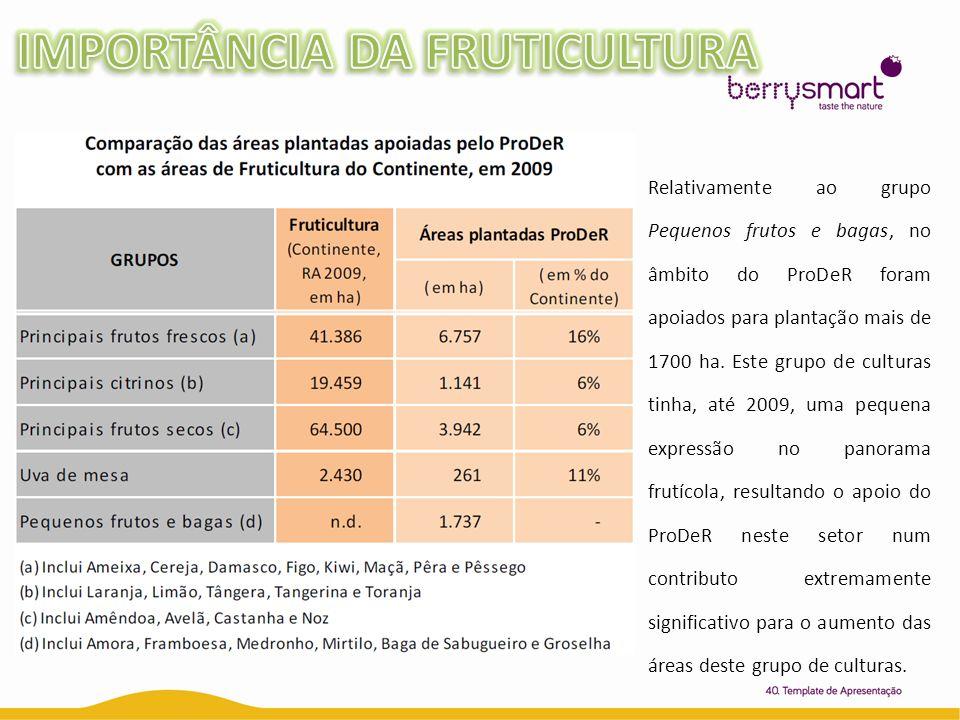 Relativamente ao grupo Pequenos frutos e bagas, no âmbito do ProDeR foram apoiados para plantação mais de 1700 ha. Este grupo de culturas tinha, até 2