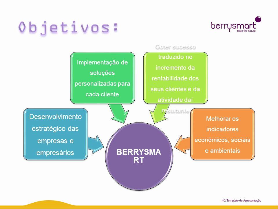 BERRYSMART Desenvolviment o estratégico das empresas e empresários Implementação de soluções personalizadas para cada cliente Obter sucesso traduzido