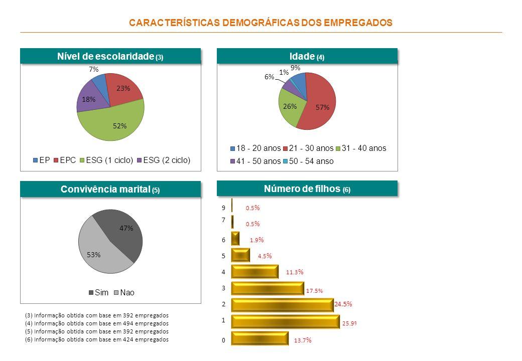 CARACTERÍSTICAS DEMOGRÁFICAS DOS EMPREGADOS Nível de escolaridade (3) (3) Informação obtida com base em 392 empregados (4) Informação obtida com base em 494 empregados (5) Informação obtida com base em 392 empregados (6) Informação obtida com base em 424 empregados Idade (4) Convivência marital (5) Número de filhos (6) 17.5% 11.3 % 1.9 % 0.5 % 6 7 9