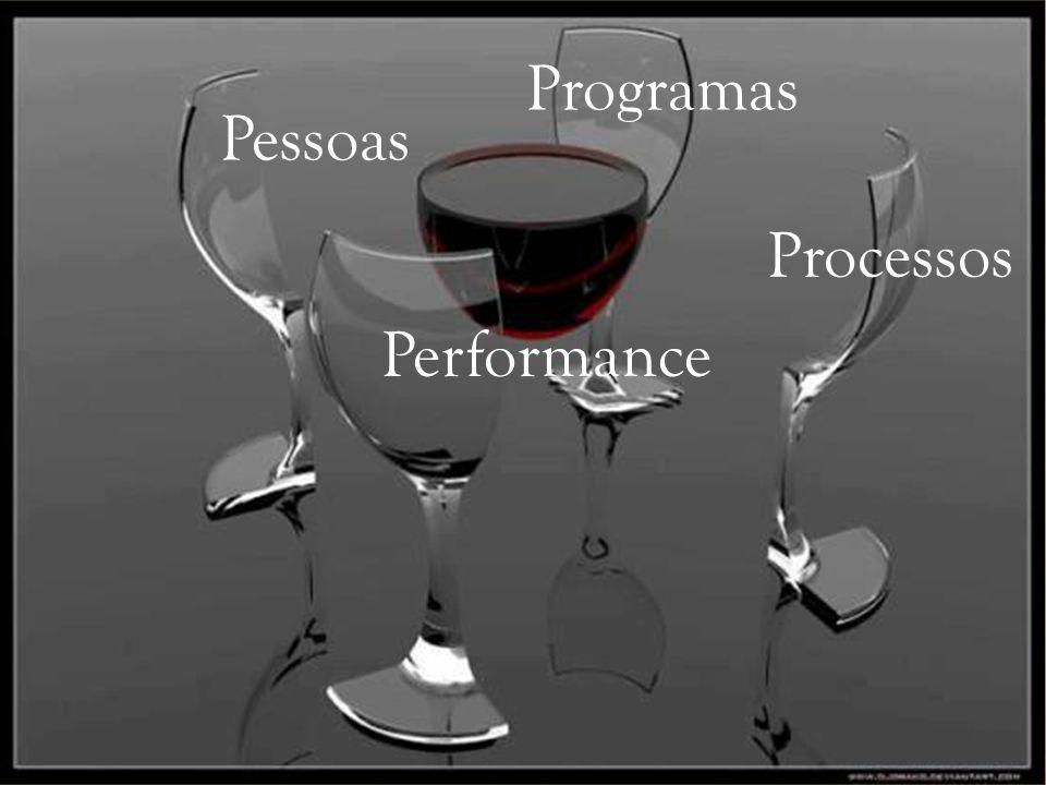 Pessoas Programas Processos Performance