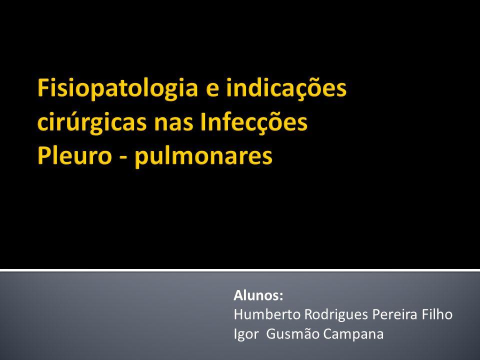 Alunos: Humberto Rodrigues Pereira Filho Igor Gusmão Campana