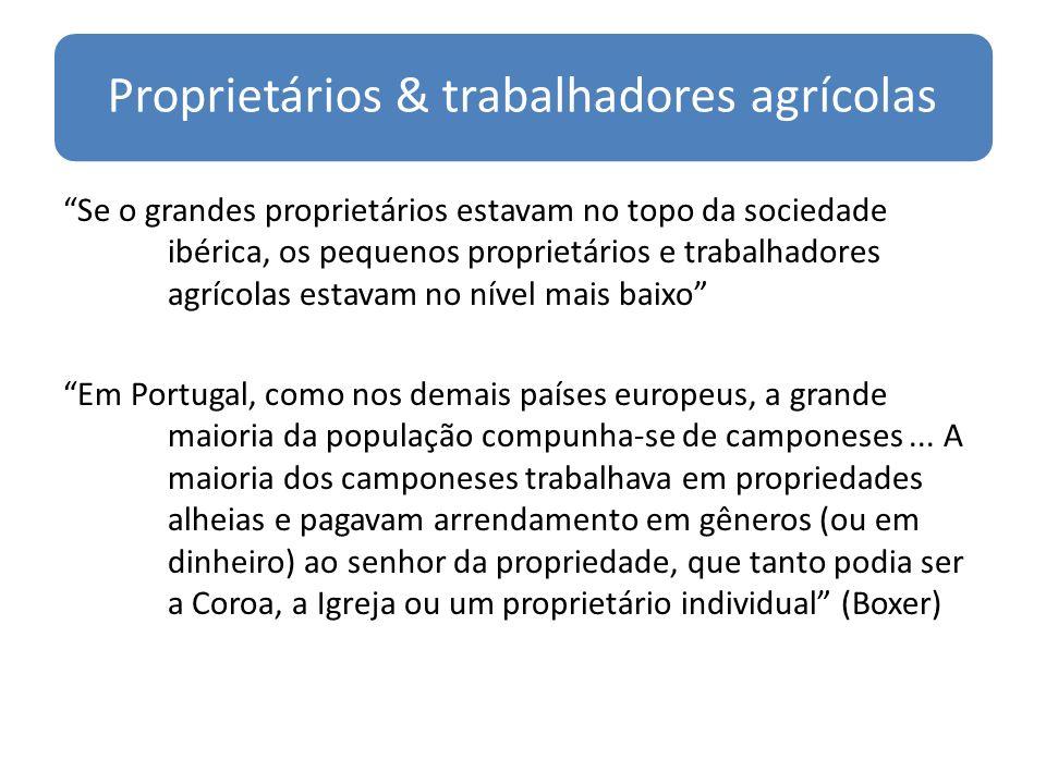 Proprietários & trabalhadores agrícolas Se o grandes proprietários estavam no topo da sociedade ibérica, os pequenos proprietários e trabalhadores agrícolas estavam no nível mais baixo Em Portugal, como nos demais países europeus, a grande maioria da população compunha-se de camponeses...