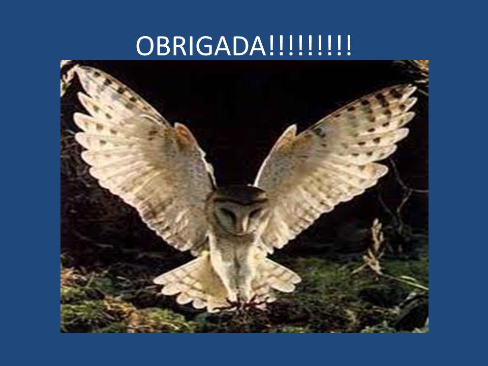OBRIGADA!!!!!!!!!