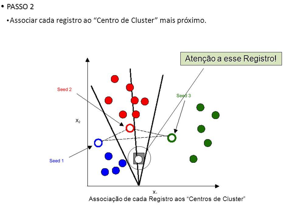 Associação de cada Registro aos Centros de Cluster Atenção a esse Registro.