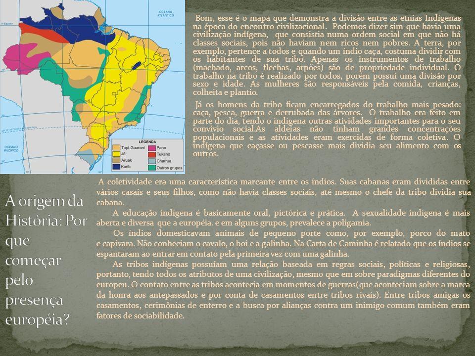 Bom, esse é o mapa que demonstra a divisão entre as etnias Indígenas na época do encontro civilizacional. Podemos dizer sim que havia uma civilização