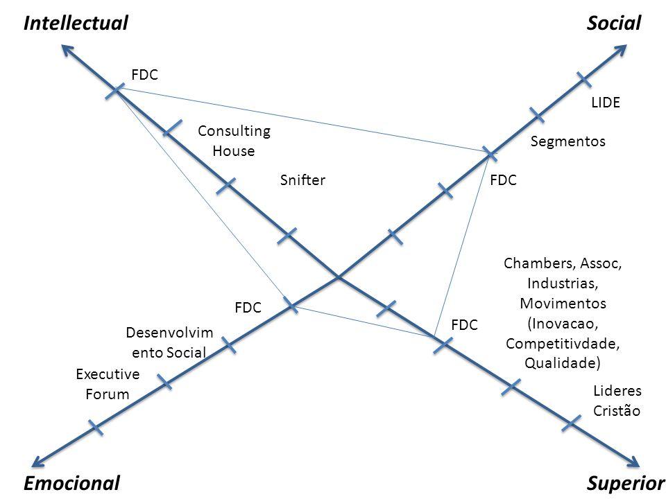 IntellectualSocial EmocionalSuperior FDC Consulting House LIDE Lideres Cristão Executive Forum Chambers, Assoc, Industrias, Movimentos (Inovacao, Comp