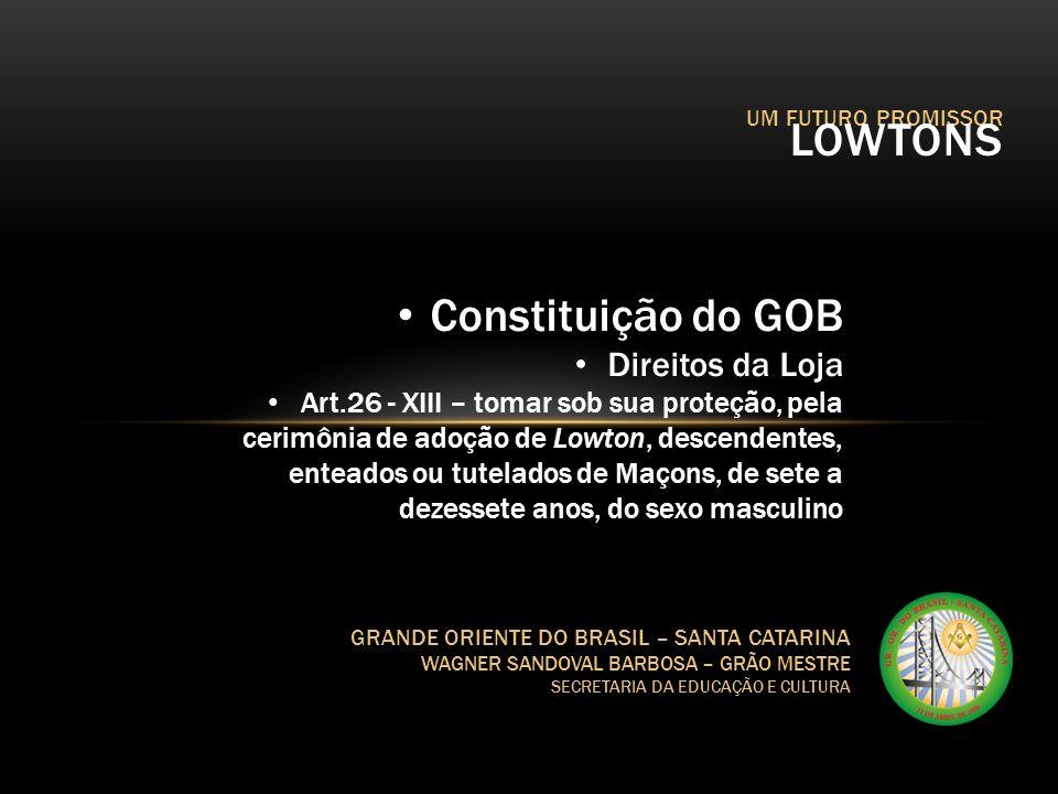 UM FUTURO PROMISSOR LOWTONS GRANDE ORIENTE DO BRASIL – SANTA CATARINA WAGNER SANDOVAL BARBOSA – GRÃO MESTRE SECRETARIA DA EDUCAÇÃO E CULTURA Constitui