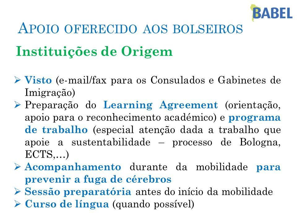 A POIO OFERECIDO AOS BOLSEIROS Instituições de Origem Visto (e-mail/fax para os Consulados e Gabinetes de Imigração) Preparação do Learning Agreement