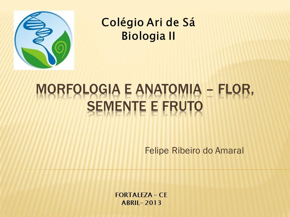 Felipe Ribeiro do Amaral Colégio Ari de Sá Biologia II FORTALEZA – CE ABRIL– 2013