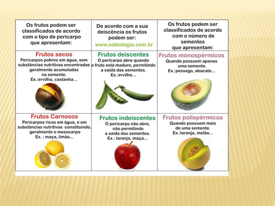 PSEUDOFRUTO falso fruto é um desenvolvimento de um tecido vegetal adjacente à flor que sustenta o fruto, de forma que este se assemelhe em cor e consistência a um fruto verdadeiro (que, por definição, é proveniente do desenvolvimento do ovário.