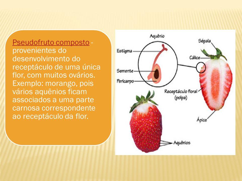 Pseudofruto compostoPseudofruto composto - provenientes do desenvolvimento do receptáculo de uma única flor, com muitos ovários. Exemplo: morango, poi