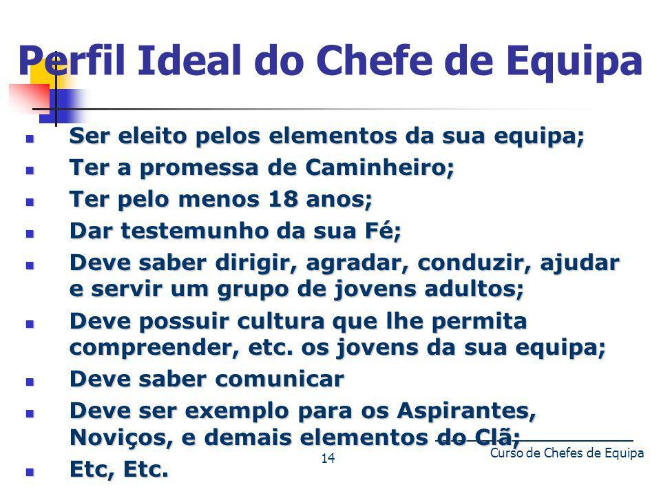 Curso de Chefes de Equipa 14 Perfil Ideal do Chefe de Equipa Ser eleito pelos elementos da sua equipa; Ser eleito pelos elementos da sua equipa; Ter a