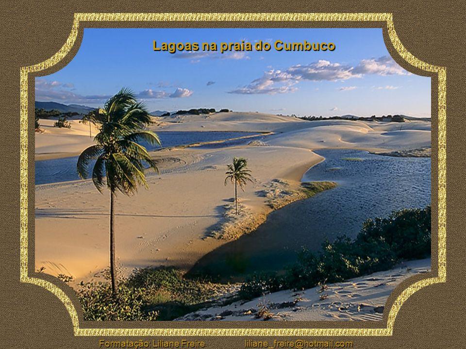 Beach Park À apenas 25 Km de Fortaleza, é o maior parque aquático da América Latina. Instalado em praia, com capacidade para 5.000 pessoas, sua maior