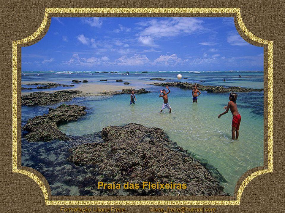 O litoral cearense possui 573 Km de lindas praias, onde podemos encontrar dunas, falésias, coqueirais, lagoas, enseadas e nascentes de água doce. Por