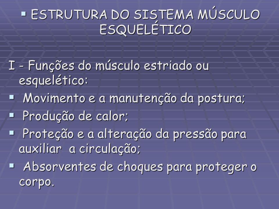 ESTRUTURA DO SISTEMA MÚSCULO ESQUELÉTICO ESTRUTURA DO SISTEMA MÚSCULO ESQUELÉTICO I - Funções do músculo estriado ou esquelético: Movimento e a manute
