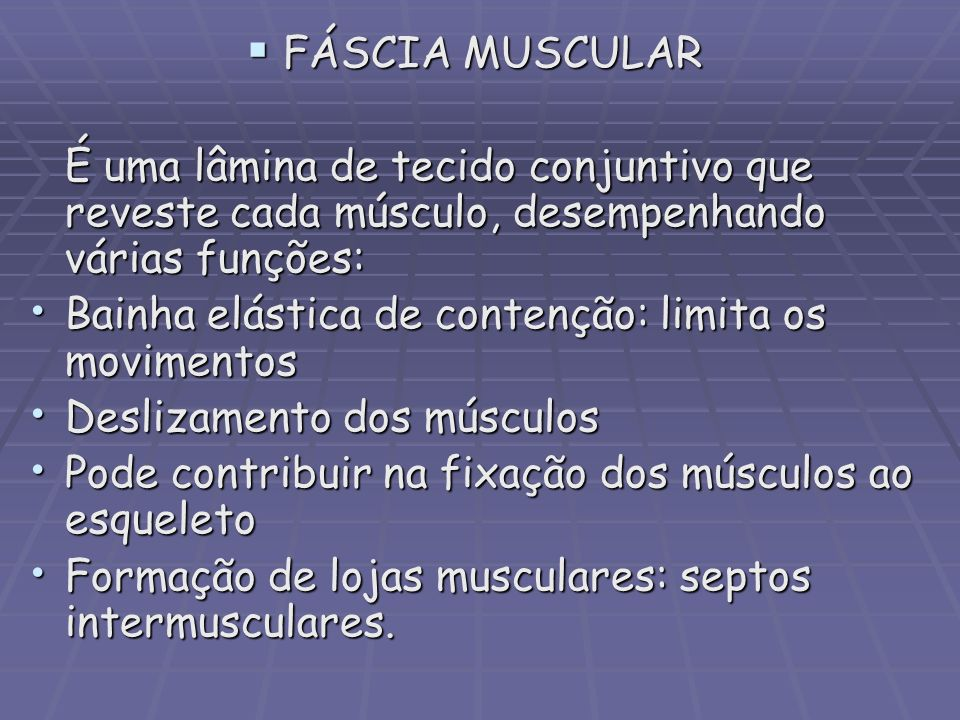 FÁSCIA MUSCULAR FÁSCIA MUSCULAR É uma lâmina de tecido conjuntivo que reveste cada músculo, desempenhando várias funções: Bainha elástica de contenção