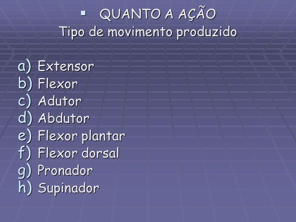 QUANTO A AÇÃO QUANTO A AÇÃO Tipo de movimento produzido a) Extensor b) Flexor c) Adutor d) Abdutor e) Flexor plantar f) Flexor dorsal g) Pronador h) S