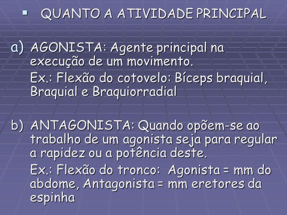 QUANTO A ATIVIDADE PRINCIPAL QUANTO A ATIVIDADE PRINCIPAL a) AGONISTA: Agente principal na execução de um movimento. Ex.: Flexão do cotovelo: Bíceps b