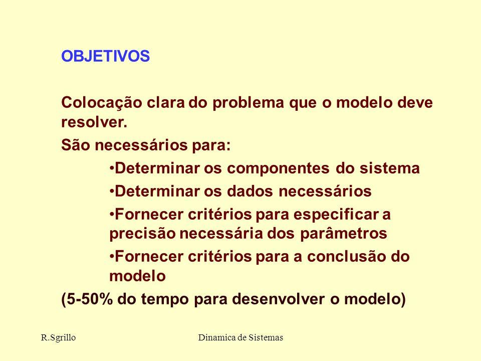 R.SgrilloDinamica de Sistemas OBJETIVOS Colocação clara do problema que o modelo deve resolver.