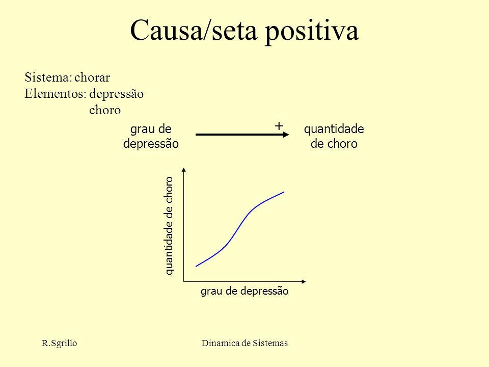 R.SgrilloDinamica de Sistemas Causa/seta positiva grau de depressão quantidade de choro grau de depressão quantidade de choro + Sistema: chorar Elementos: depressão choro