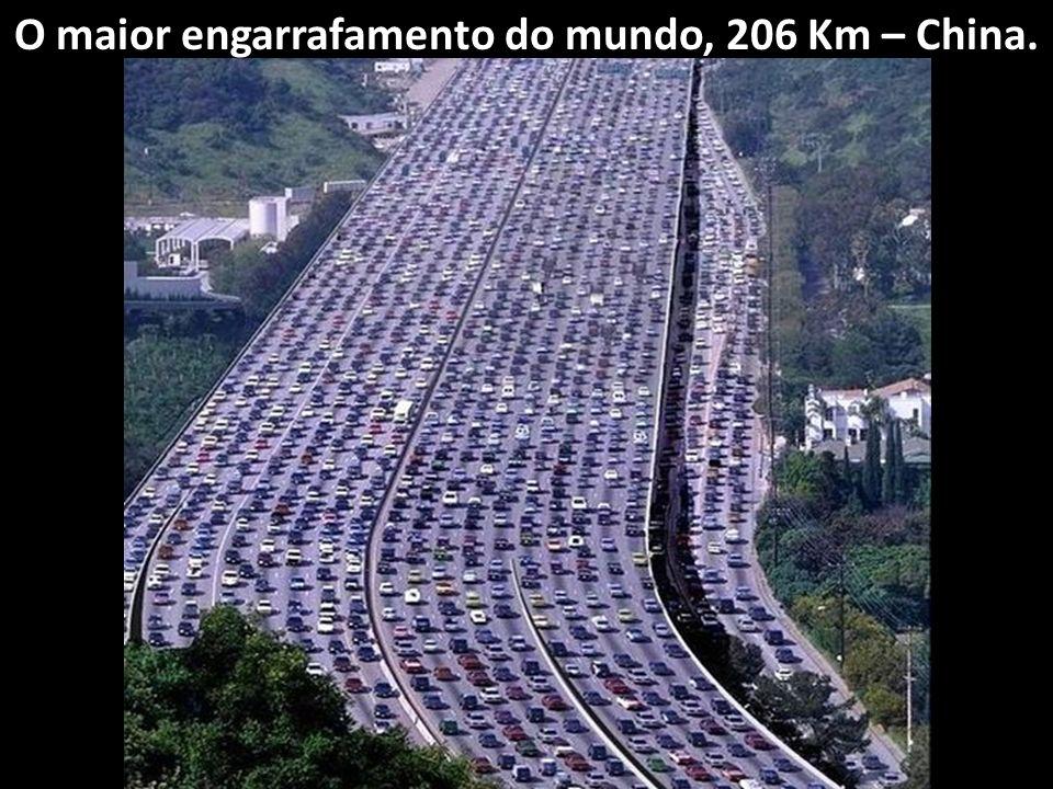 O maior carrossel do mundo, 117 metros 117 metros
