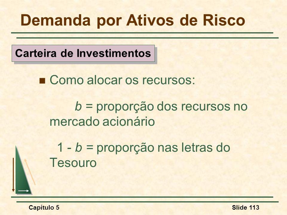 Capítulo 5Slide 113 Demanda por Ativos de Risco Como alocar os recursos: b = proporção dos recursos no mercado acionário 1 - b = proporção nas letras