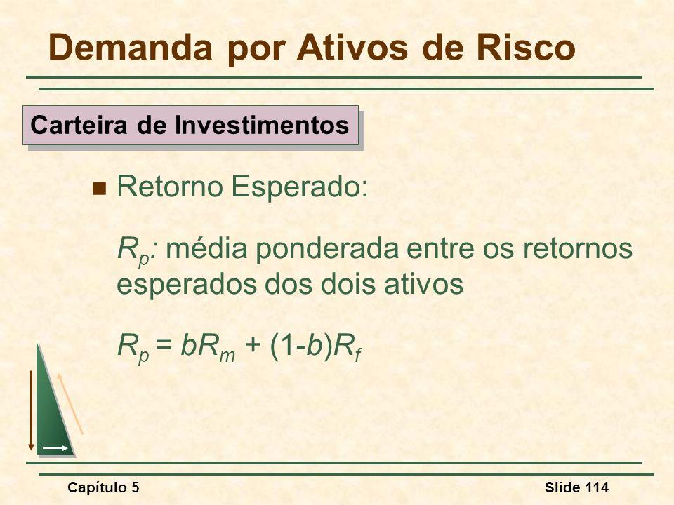 Capítulo 5Slide 114 Demanda por Ativos de Risco Retorno Esperado: R p : média ponderada entre os retornos esperados dos dois ativos R p = bR m + (1-b)