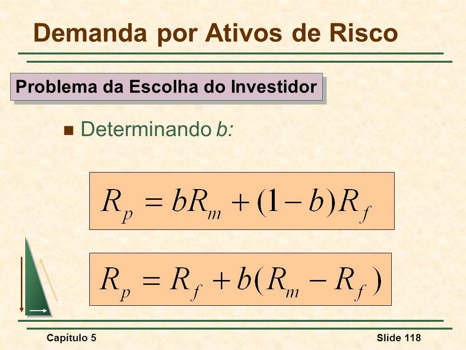 Capítulo 5Slide 118 Demanda por Ativos de Risco Determinando b: Problema da Escolha do Investidor