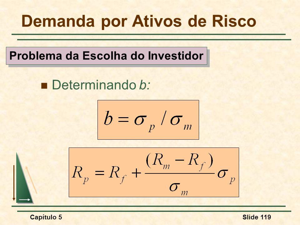 Capítulo 5Slide 119 Demanda por Ativos de Risco Determinando b: Problema da Escolha do Investidor