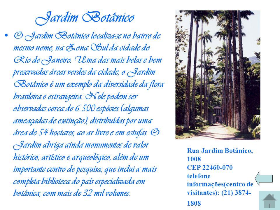 Jardim Botânico O Jardim Botânico localiza-se no bairro de mesmo nome, na Zona Sul da cidade do Rio de Janeiro. Uma das mais belas e bem preservadas á