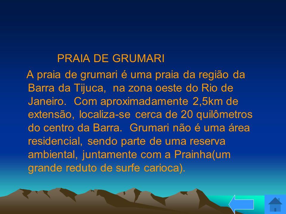 PRAIA DE GRUMARI A praia de grumari é uma praia da região da Barra da Tijuca, na zona oeste do Rio de Janeiro. Com aproximadamente 2,5km de extensão,