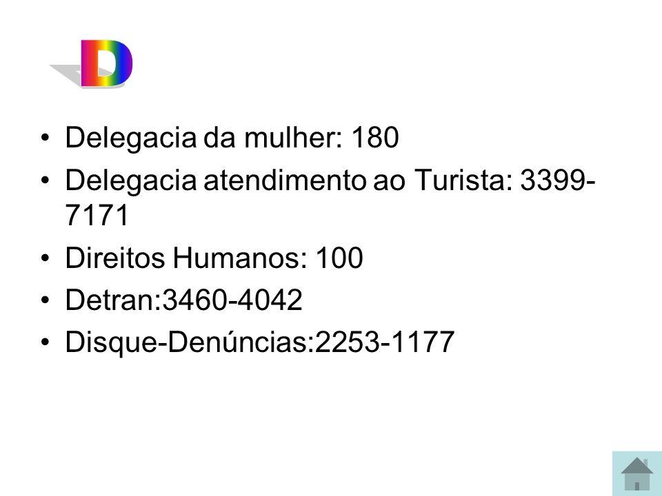 Delegacia da mulher: 180 Delegacia atendimento ao Turista: 3399- 7171 Direitos Humanos: 100 Detran:3460-4042 Disque-Denúncias:2253-1177