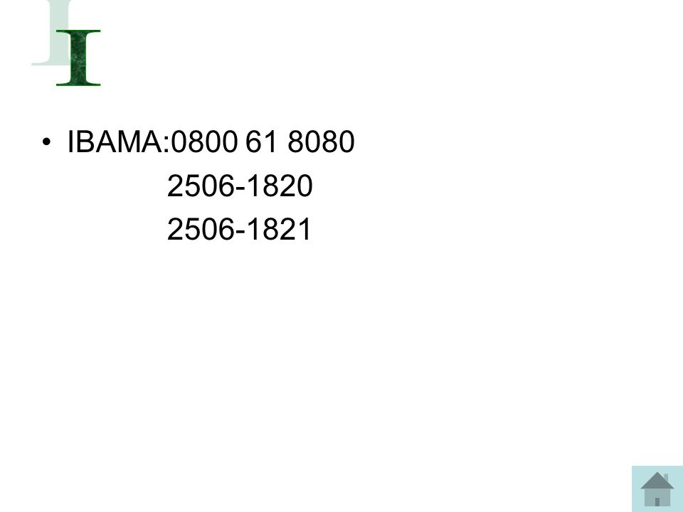 IBAMA:0800 61 8080 2506-1820 2506-1821