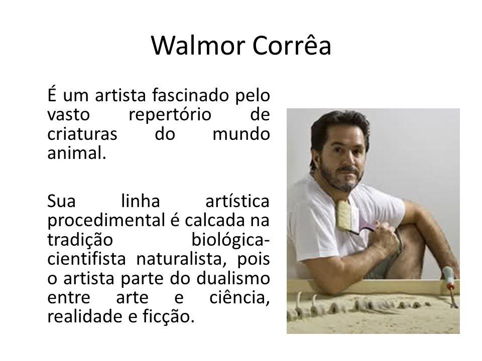 Walmor Corrêa É um artista fascinado pelo vasto repertório de criaturas do mundo animal.