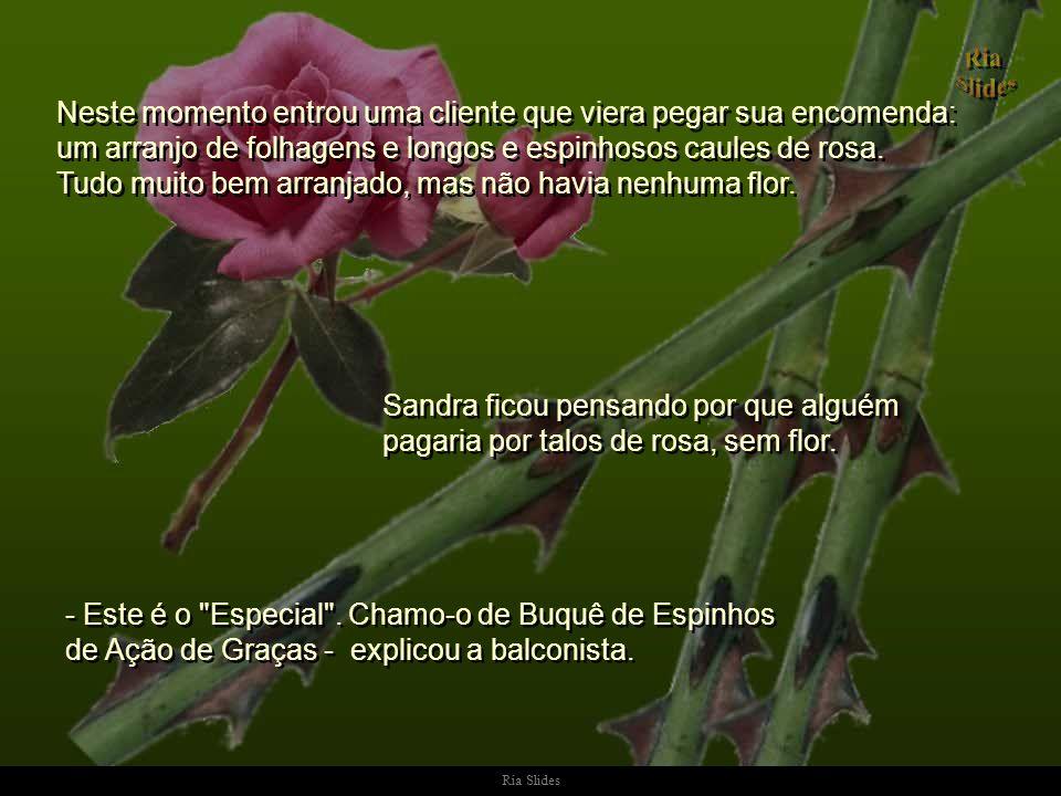 Ria Slides Neste momento entrou uma cliente que viera pegar sua encomenda: um arranjo de folhagens e longos e espinhosos caules de rosa.