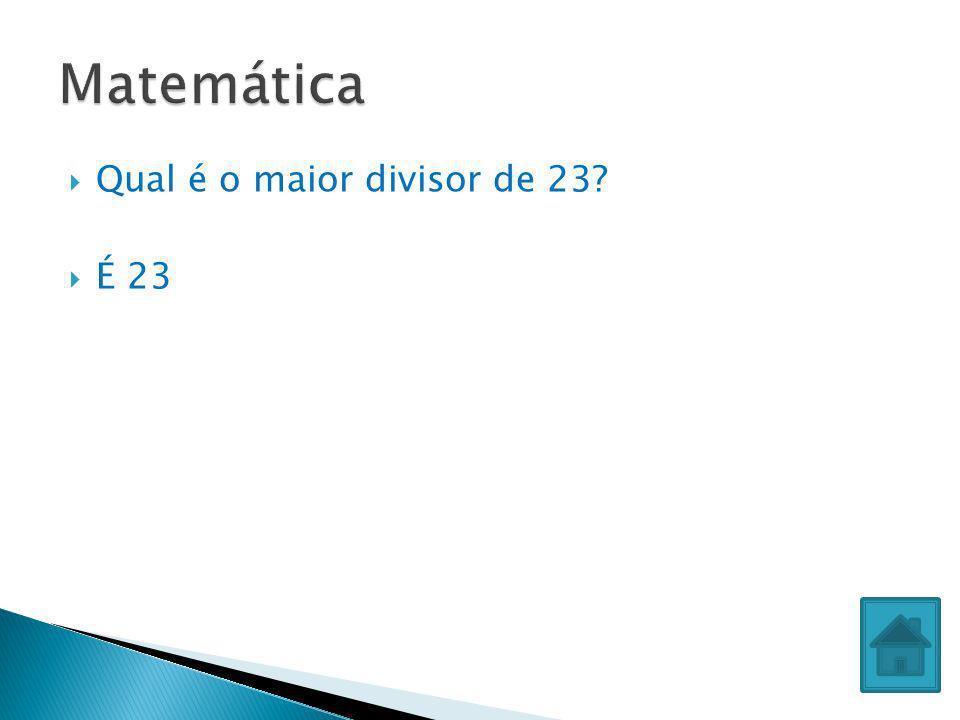 Qual é o maior divisor de 23? É 23