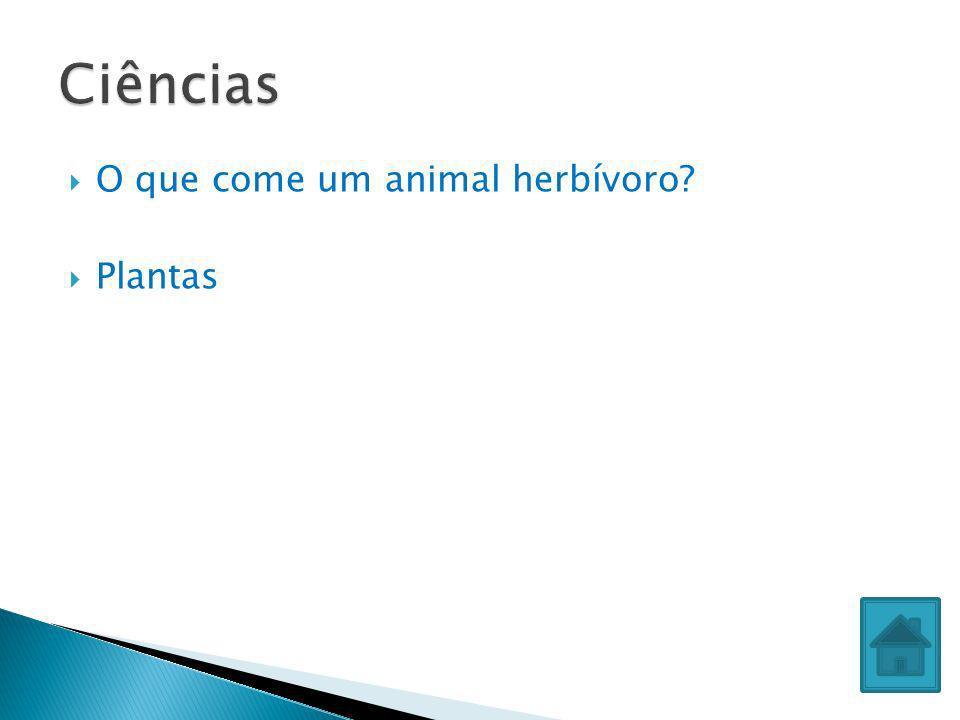 O que come um animal herbívoro? Plantas