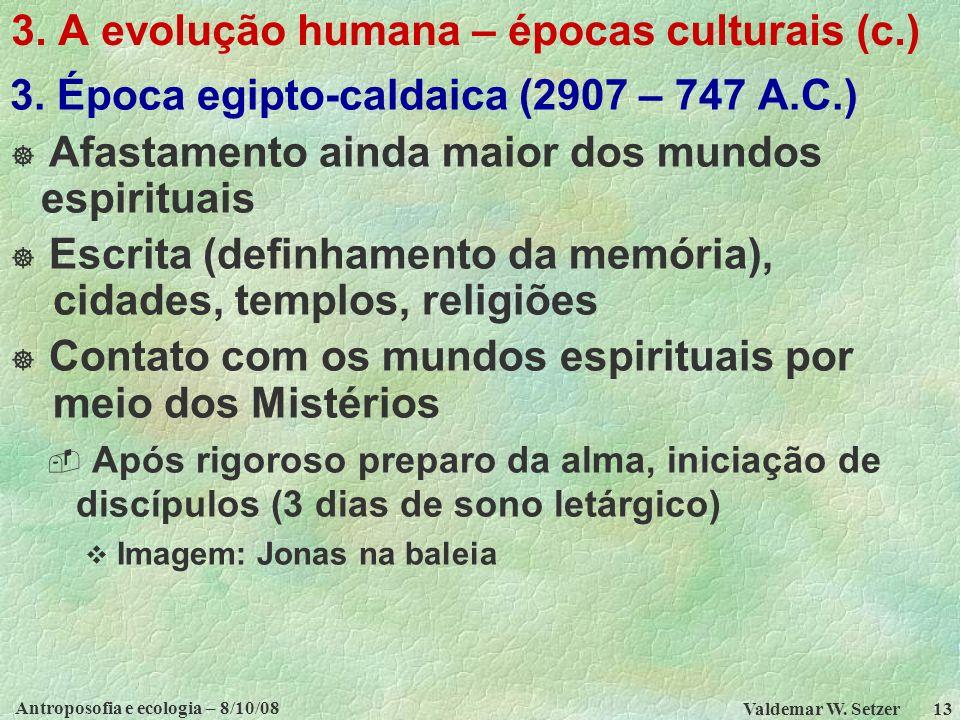 Antroposofia e ecologia – 8/10/08 Valdemar W.Setzer 13 3.