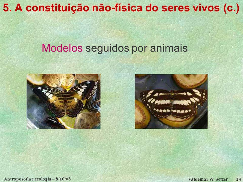 Antroposofia e ecologia – 8/10/08 Valdemar W.Setzer 24 5.