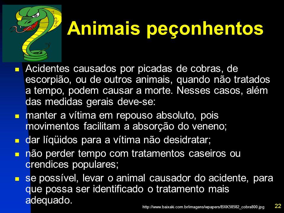 22 Animais peçonhentos Acidentes causados por picadas de cobras, de escorpião, ou de outros animais, quando não tratados a tempo, podem causar a morte